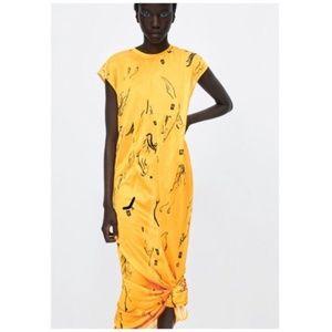 NWT Zara | Yellow Sheer Maxi Dress